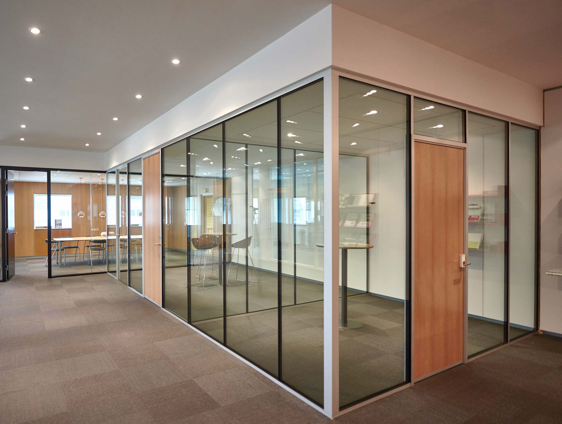 Tp Acoustic Sound Rated Glass Wall